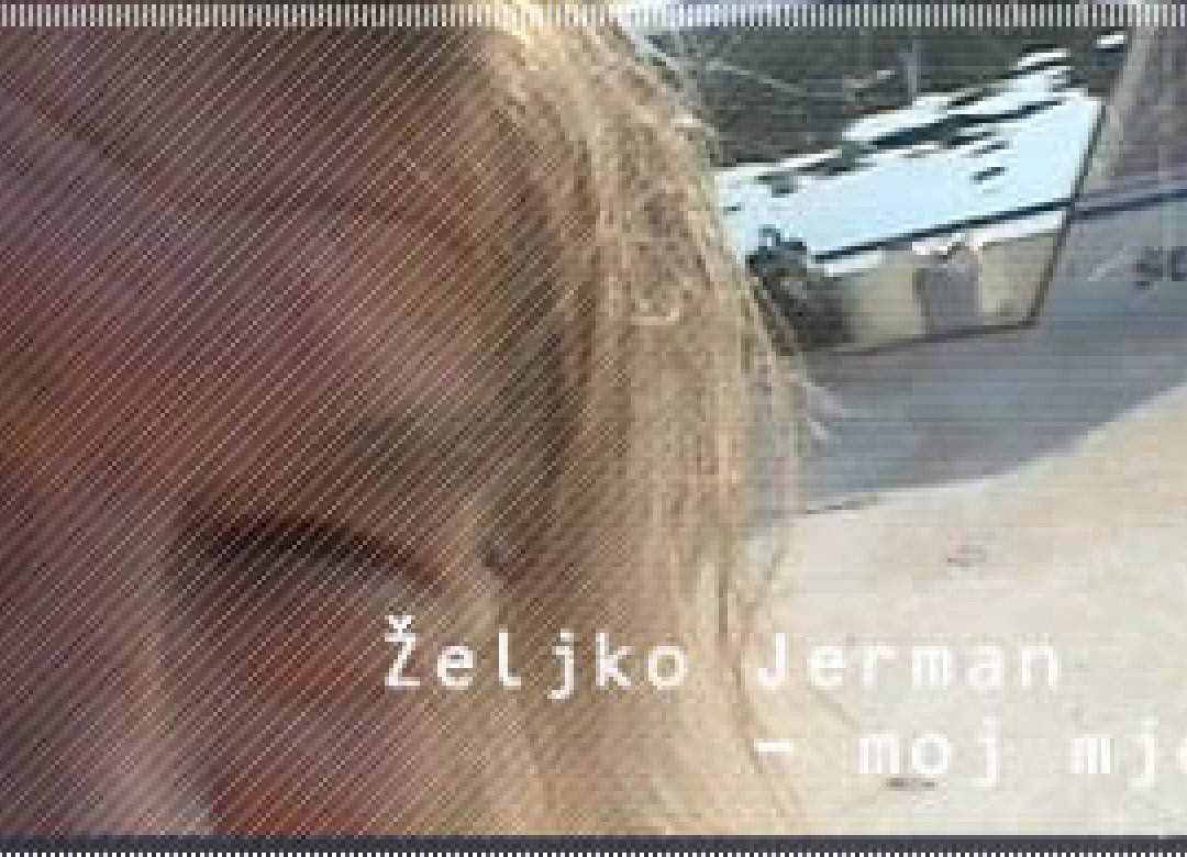 Zeljko Jerman - My Month